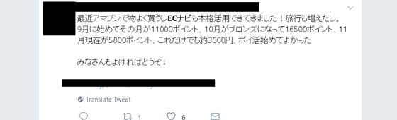 ECナビ評判②